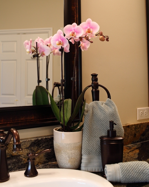 pink-orchid-in-bathroom-loves-humidity