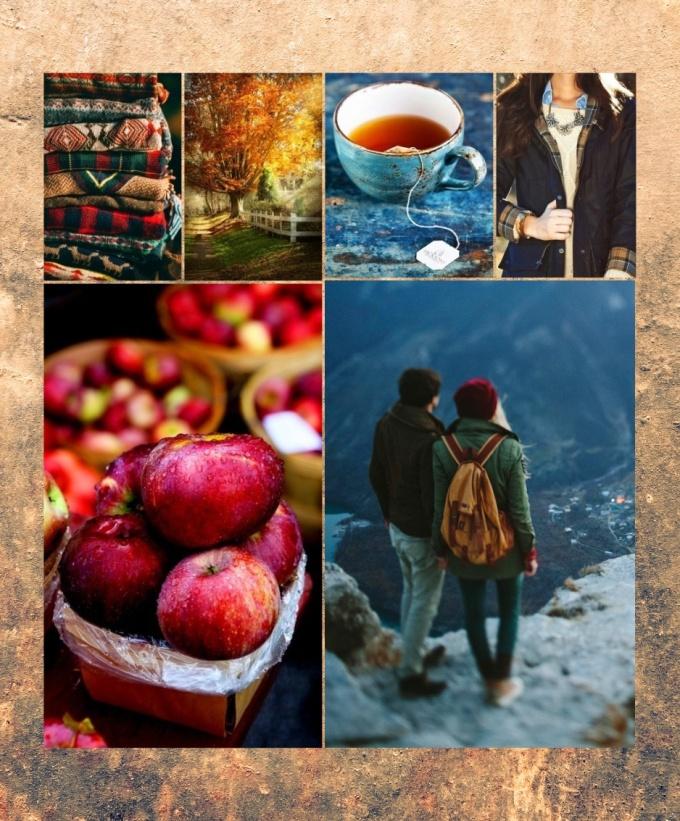 autumn mood board